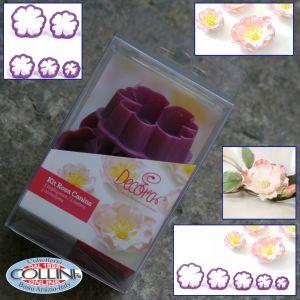 Decora - Kit Rosa Canina per fiori in pasta di zucchero
