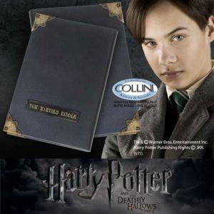 Harry Potter, Horcrux Diario di Tom Marvolo Riddle
