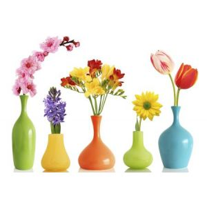 Made in Italy - Cut flowers - Gardening