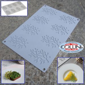 Pavoni - Silicone mold Pavoflex BONSAI 8 servings