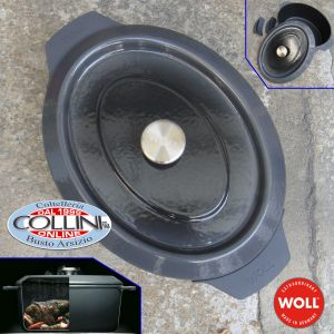 Woll - High Saucepan 28 cm in diameter 2 handles